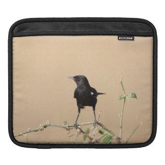 Housse iPad Petit oiseau noir sur la branche de Bush