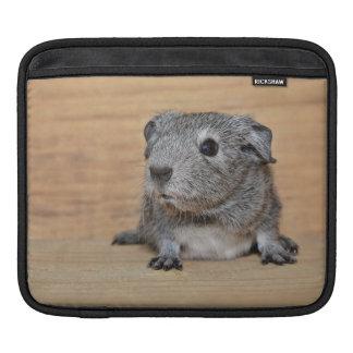 Housse iPad Un cobaye gris mignon sur le bois de Brown