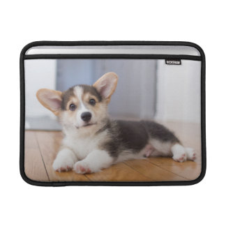 Housse Macbook Air Chiot de corgi de Gallois de Pembroke