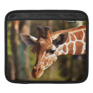 Housse Pour iPad Brown mignon et portrait blanc de visage de girafe