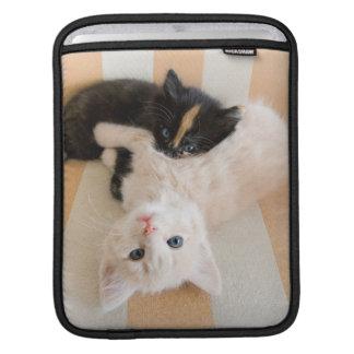 Housse Pour iPad Chatons blancs et noirs