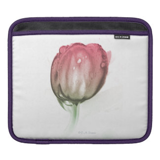 Housse Pour iPad Douille rouge de tulipe