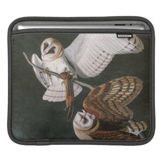 Housse Pour iPad Hiboux de grange, les oiseaux de l'Amérique John