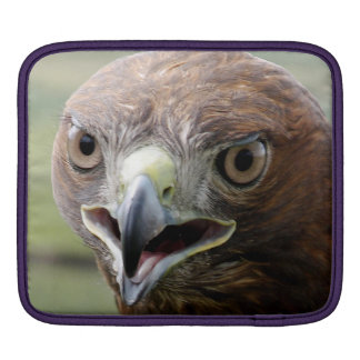 Housse Pour iPad iPad de douille de Rickshaw avec le faucon coupé