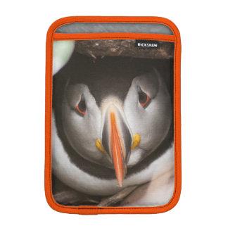 Housse Pour iPad Mini Cas de macareux