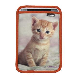 Housse Pour iPad Mini Chaton minuscule de gingembre