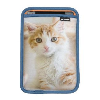 Housse Pour iPad Mini Chaton orange et blanc