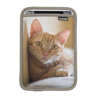 Housse Pour iPad Mini Chaton se trouvant sur le divan