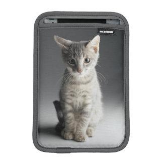 Housse Pour iPad Mini Chaton tigré bleu