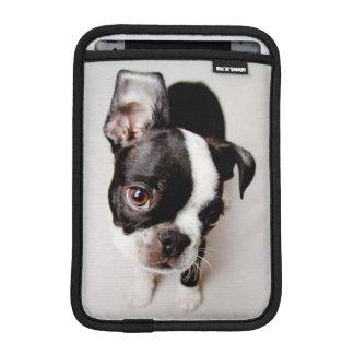 Housse Pour iPad Mini Chiot d'Edison Boston Terrier