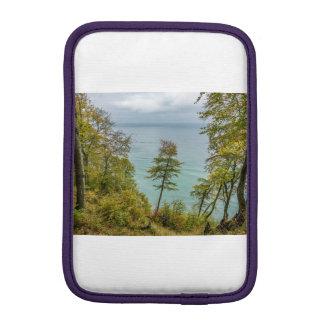 Housse Pour iPad Mini Forêt côtière sur la côte de mer baltique