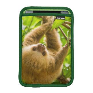 Housse Pour iPad Mini Paresse à l'envers des images | de Getty