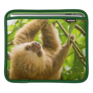 Housse Pour iPad Paresse à l'envers des images | de Getty