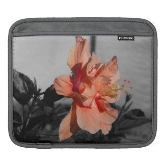 Housse Pour iPad Photo couleur sélective de double fleur de ketmie