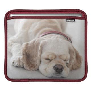 Housse Pour iPad Sommeil de chien de cocker