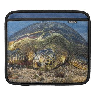 Housse Pour iPad Sommeil sur le sable