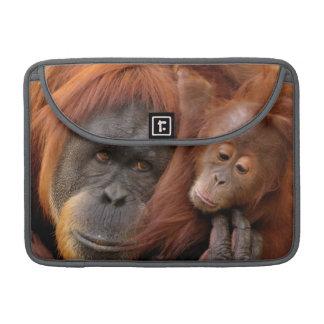 Housse Pour Macbook Orang-outan de mère et de bébé