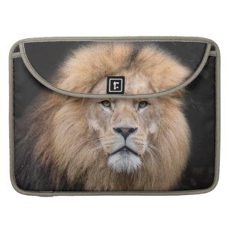 Housse Pour Macbook Portrait de plan rapproché d'un lion masculin