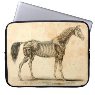 Housse Pour Ordinateur Portable Douille d'ordinateur portable d'anatomie de cheval