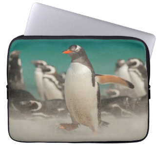 Housse Pour Ordinateur Portable Groupe de pingouin sur la plage, Malouines