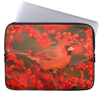 Housse Pour Ordinateur Portable Mâle cardinal du nord rouge, IL