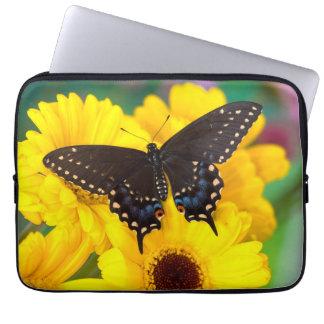 Housse Pour Ordinateur Portable Papillon noir de machaon