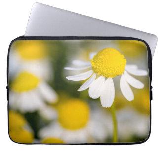 Housse Pour Ordinateur Portable Plan rapproché de fleur de camomille, Hongrie