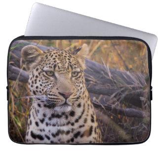Housse Pour Ordinateur Portable Séance de léopard, Botswana, Afrique