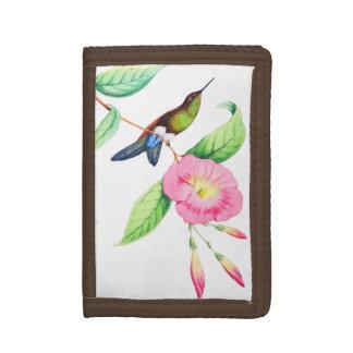Humingbird et Hybiscus