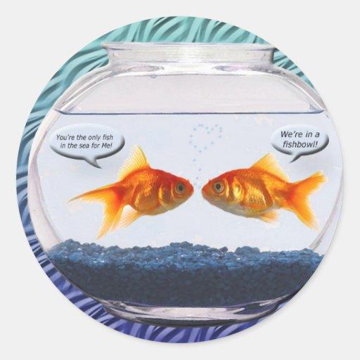 Pin bocal poisson on pinterest for Bocal de poisson rouge