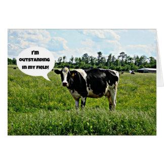 Cartes de v ux humour vache for Carte de voeux humour