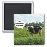 Humour de vache magnets pour réfrigérateur