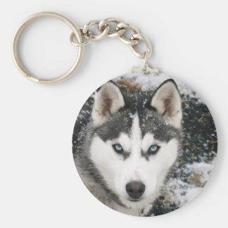 Husky dog porte-clés