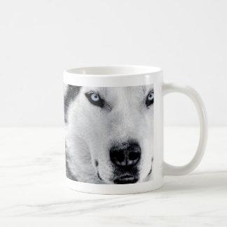 huskys mug blanc