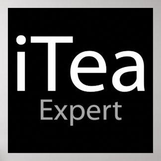 i expert en matière de thé (IL expert) Affiches