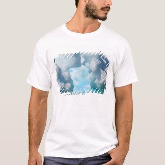 Icebergs de glace du bout du sud des sud t-shirt