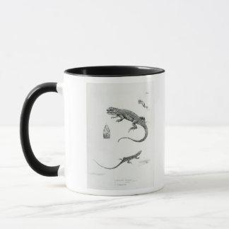 Iguane décalé mug