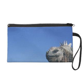 Iguane marin sacs à main avec dragonne