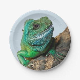 Iguane vert assiettes en papier
