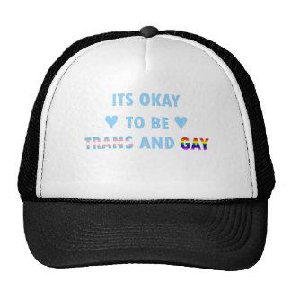 Il est correct d'être le transport et l'homosexuel casquette