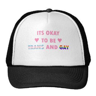 Il est correct d'être le transport et l'homosexuel casquettes