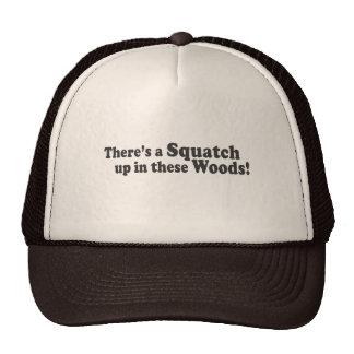 Il y a un Squatch en ces bois ! Poussée multiple Casquette