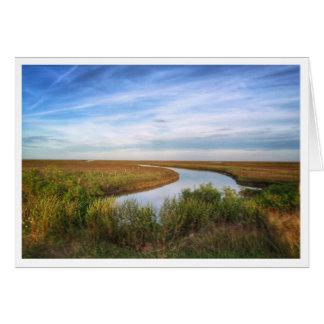 Île de héron, Matagorda, TX Carte De Vœux