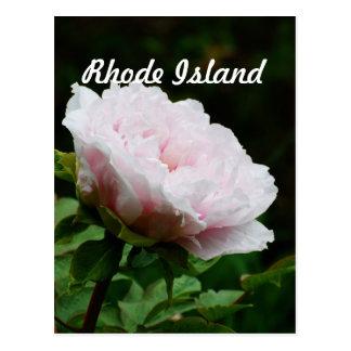 Île de Rhode Carte Postale