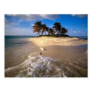 Île de Sandy Anguilla des Caraïbes Cartes Postales