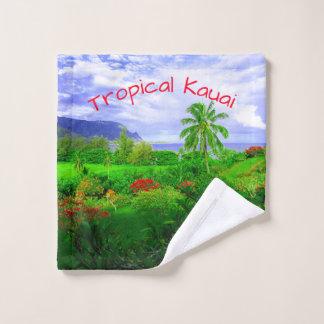 Île hawaïenne tropicale de Kauai