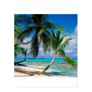 Île tropicale Tepuka Tuvalu Carte Postale