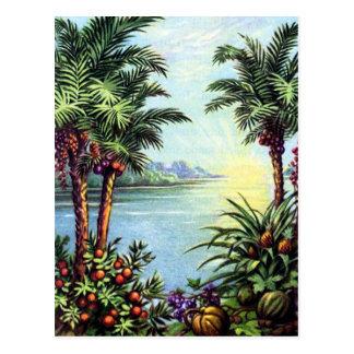 Île vintage cartes postales