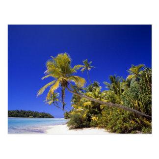 Îles Cook rayées par paume de plage 7 Carte Postale