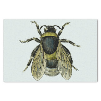 Illustration antique d'abeille papier mousseline